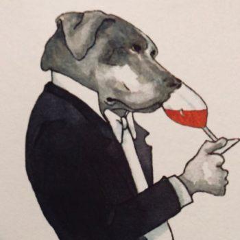 wine dog